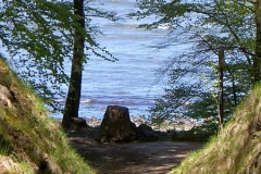 Rügen, Ostseebad Binz, Granitz1